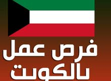 مطلوب مدير مالي للعمل في الكويت