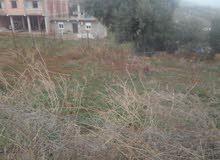 قطع أرضي ب مدينة اربعطاش ولاية بومرداس