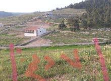 ارض للبيع شرق جرش