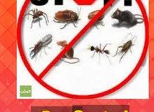 تنظيف الفلل الجديده ومكافحة الحشرات الصراصير والفئران