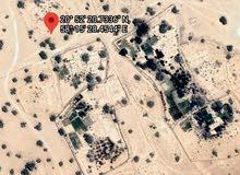 أرض زراعية في محوت الجوبة مساحتها 13800 متر مربع