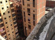 شقة للإيجار في القاهرة بعقد دائم لمدة 59 سنة
