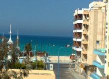 شقة 85م سوبرلوكس بشاطئ الفيروز وترى البحر بمقدم 30% وقسط 36 شهر