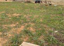 ارض للبيع 447 متر مربع في طريق المشتل