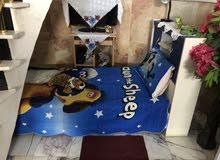 غرفة نوم جديده ونضيفه كلش السعر350وبيه مجال هواي للشراي  07724921045 المكان بابل (بابل)