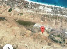 تقسيمات أراضي الساحل الشمالي مدينة الحمام