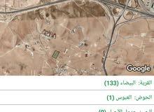 أرض للبيع في منطقة البيضاء حوض العبوس 1 بمساحة 11 دونم