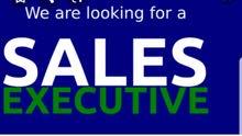 Sales Executive Car Rental