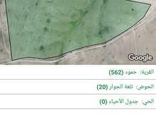 قطعتين أرض للبيع 153دونم و143 دونم -الكرك/القصر/حمود