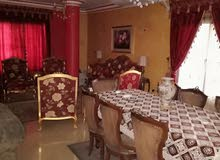 شقة بتقسيم عمرو بن الخطاب مكان راقى و متميز