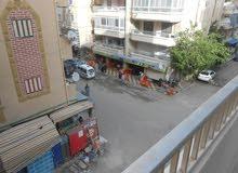 شقة ناصية شارع رئيسي تاني نمرة للشارع الرئيسي في شاطئ النخيل