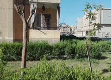 شقة للبيع دور ارضي مرتفع70م بالشيخ زايد الحي 16 عمارات بدر الدين  امام نادي الكر