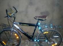 دراجه رامبو مقاس 24