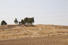 ارض ع شارع المطار  مساحة 13دنم عدة تصاريح استثمارية