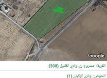 للبيع ارض 26 دونم في مشروع ري وادي الضليل