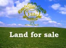 قطعة ارض بالقرب من البحر الميت للبيع