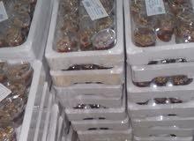 عسلية 24 حبة .