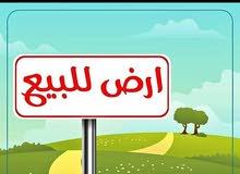 السلام عليكم kit3a ardiya 145m 2farsadat lilbay3 bi mentakat borj melossa tanger