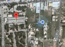 ارض في بوابه الجبس بجوار الدعوة الاسلامية مسورة وواجهتها 66 متر ذات طريق إسفلتي