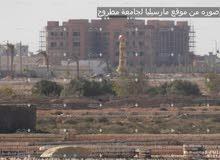الاستثمار الصح في مرسي مطروح
