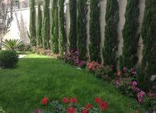 شقة خلف مخابز براديس 3نوم لإيجار فارغ جديد لم تسكن ارضية مع حديقة ومدخل خاص