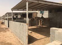 مزرعة للبيع في الرياض بمنطقة الخرج قيد الانشاء