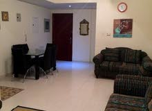 new apartment is up for rent in Sharjah