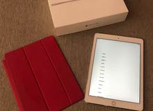 iPad Air 2 with Facetime 16GB Silver Wi-Fi + Cellular smart cover (PRODUCT) RED