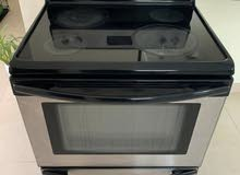solid Ceramic oven cooker- works well