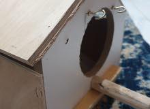 cockatiel nest