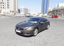 Nissan Maxima 2013 (Brown)