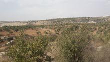 أرض زراعية للبيع