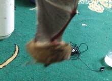خفاش... للبيع..