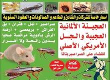 مكافحة الحشرات بق