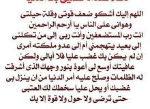 محفظة قرآن كريم بالتجويد للأطفال وتأسيس لغة عربية  والسيدات