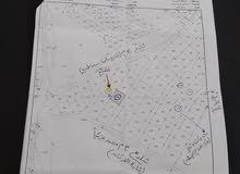 أرض دونم سكن ب بأحكام خاصة للبيع في الدمينة - مع إمكانية قبول شقة في عبدون ..