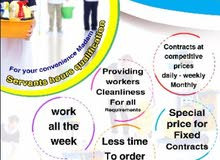 cleaning company per hour,weekly,monthly