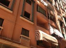 شقة بزهراء مدينة نصر 175 متر بسعر لقطة