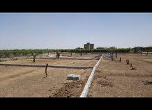 ارضيه استثماريه في صنعاء باسعار روووعه مضمونه