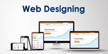 Looking for Professional Web Designer? Professional Website? Custom Website? Contact US