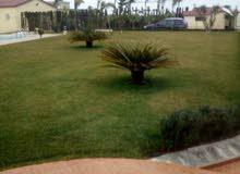 مزرعة وفيلا