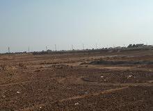 ارض للبيع فرصة العمرمن المتحدة امتلك مزرعة تبدء من 5 فدان لحد500فدان