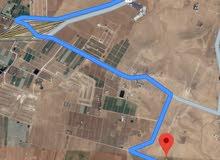 للبيع ارض 3.9 دونم في الذهيبه الغربيه حوض 3