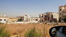 ارض مميزه على شارعين للبيع في البنيات