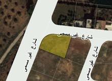 للبيع ارض 600 م في الطنيب شارع 30 م