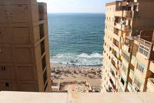 شقة 90 م سوبر لوكس تري البحر