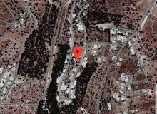 ابو السوس البحاث حوض الدبة سكن خاص مميزة