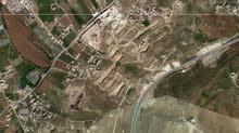 أرض مساحة دونم و24م مميزة جداُ للبيع/ شارع الاردن