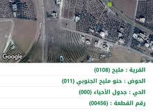 أرض للبيع في منطقة مليح/ مأدبا بسعر مغري