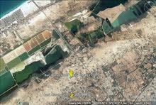 مصر - الاسكندرية - برج العرب